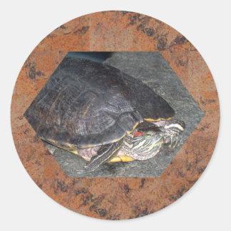 Thoughtful Turtle Classic Round Sticker