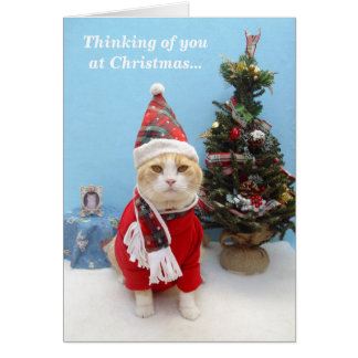 Thoughts of You at Christmas Greeting Card
