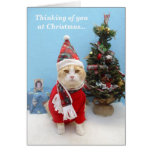 Thoughts of You at Christmas Greeting Cards