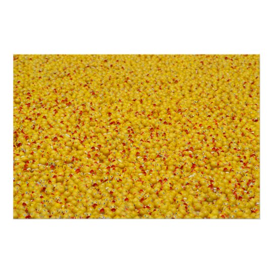 Thousands of ducks  poster