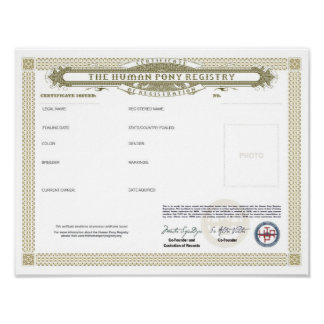 THPR Do-It-Yourself Certificate 8x11 Poster
