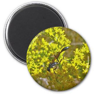 Thread-Waist Wasp on Goldenrod Items 2 Inch Round Magnet