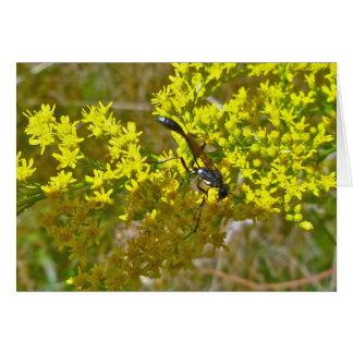 Thread-Waist Wasp on Goldenrod Items Card