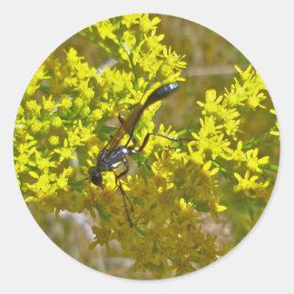 Thread-Waist Wasp on Goldenrod Items Classic Round Sticker