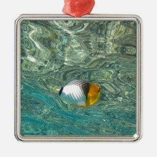Threadfin Butterflyfish Metal Ornament