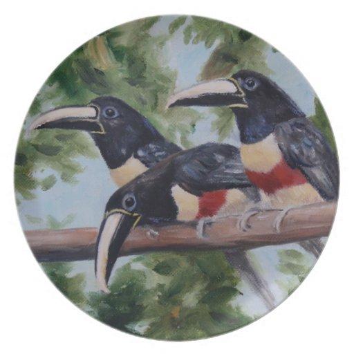 Three Amigo Toucan Plate