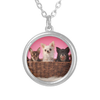 Three Amigos Chihuahua Trio Silver Plated Necklace