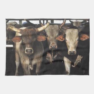 Three Amigos cow bull cowboy western kitchen towel