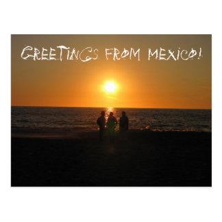Three Amigos; Mexico Souvenir Post Card