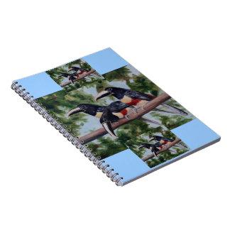 Three Amigo's Toucan Notebook