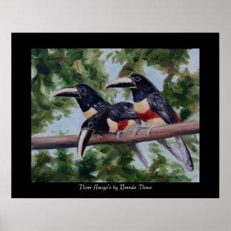 Three Amigo's Toucan Poster Print