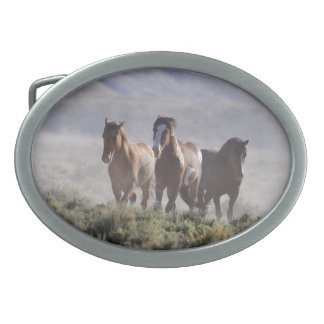 Three Amigos Wild Mustang Belt Buckle