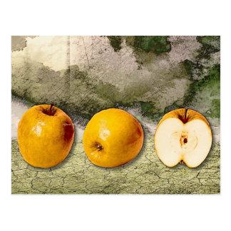 Three Apples – Surreal! Postcard