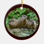 Three Baby Groundhogs Christmas Ornaments
