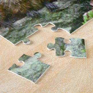 Three Baby Groundhogs Jigsaw Puzzle