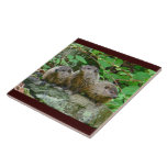 Three Baby Groundhogs Large Square Tile
