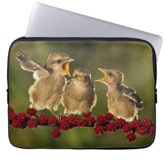Three Baby Lanius Schach Birds Laptop Sleeve