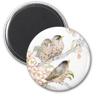 Three Baby Robins in a Cherry Tree Magnet