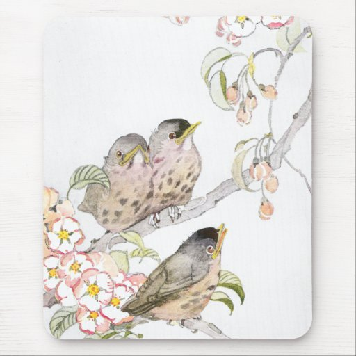 Three Baby Robins in a Cherry Tree Mousepads