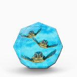 "Three Baby Sea Turtles Swimming Award<br><div class=""desc"">Three baby sea turtles swim in the blue ocean waters on this fun aquatic design.</div>"