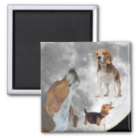 Three Beagles and the Moon Magnet