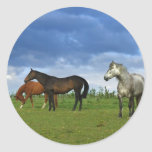 Three beautiful horses on sunny Summer day Sticker