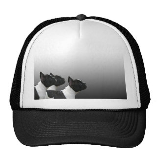 Three Black and White French Bulldogs Trucker Hat