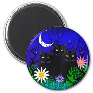 Three Black Cats at Night Magnet