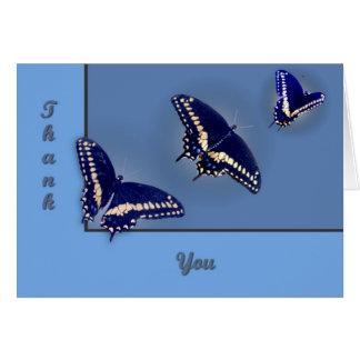 Three Black Swallowtail Card