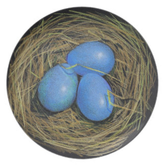 Three Blue Bird Eggs in Nest: Color Pencil Art Party Plates