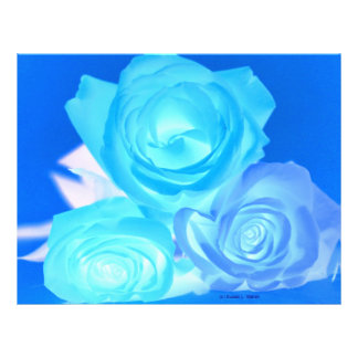 Three blue roses inverted picture flyer design