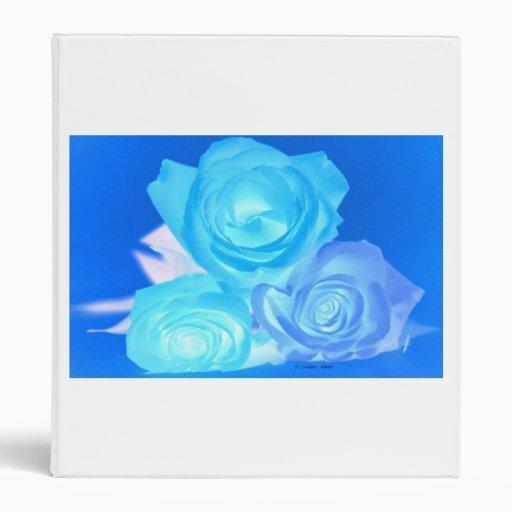 Three blue roses inverted picture vinyl binder