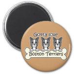 Three Boston Terriers Refrigerator Magnets