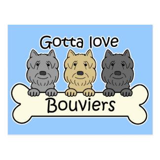 Three Bouviers Postcard