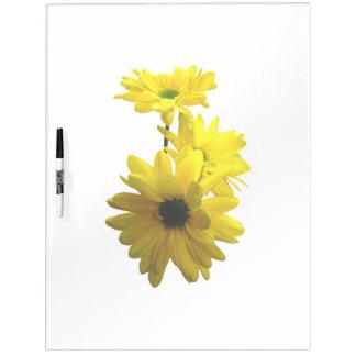 Three Bright Yellow Daisies Dry-Erase Board