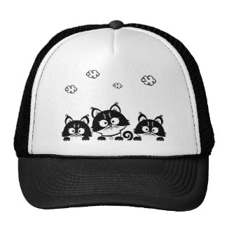 three brothers cat picture hat