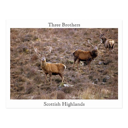 Three Brothers, Scottish Highlands Postcard