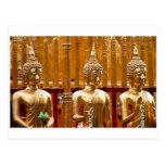 Three Buddhas in Thailand Postcard