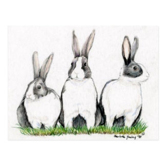 """Three Bunnies"" Animal Art Postacard Postcard"