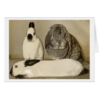 Three Bunnies Greeting Card