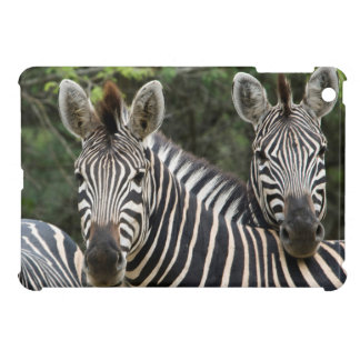 Three Burchell's Zebra (Equus Burchellii) Stand iPad Mini Covers
