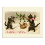 Three cats and a Holly branch Post Card