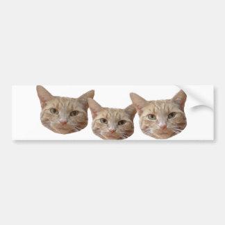 Three cats beige/white/orange bumper sticker