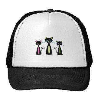Three Cats Hat