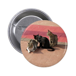 Three cats in a pensive mood pinback button