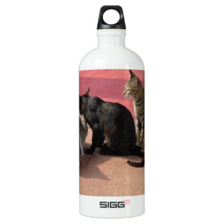 Three cats in a pensive mood water bottle