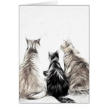 Three Cats Stationery Note Card