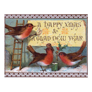 Three charming Birds Postcard