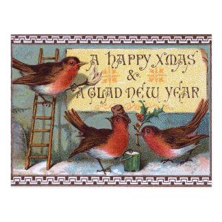 Three charming Birds Postcard