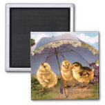 Three Charming Easter Chicks 2 Inch Square Magnet